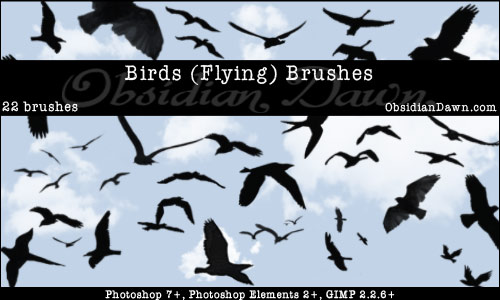 A set of Photoshop & GIMP brushes composed of various flying birds.