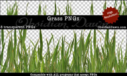 Afbeeldingen van Blades Of Grass Background For Phot…