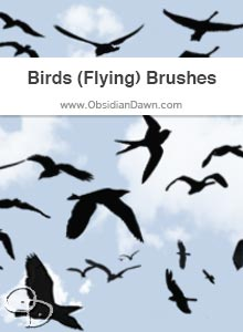 Birds (Flying) Brushes