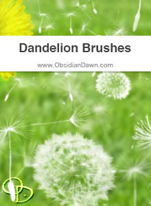 Dandelions Brushes