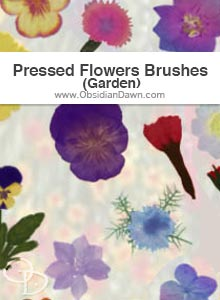 Pressed Garden Flowers Brushes
