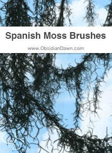 Spanish Moss Brushes
