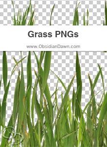 Grass PNGs