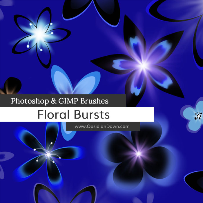 Floral Bursts Brushes