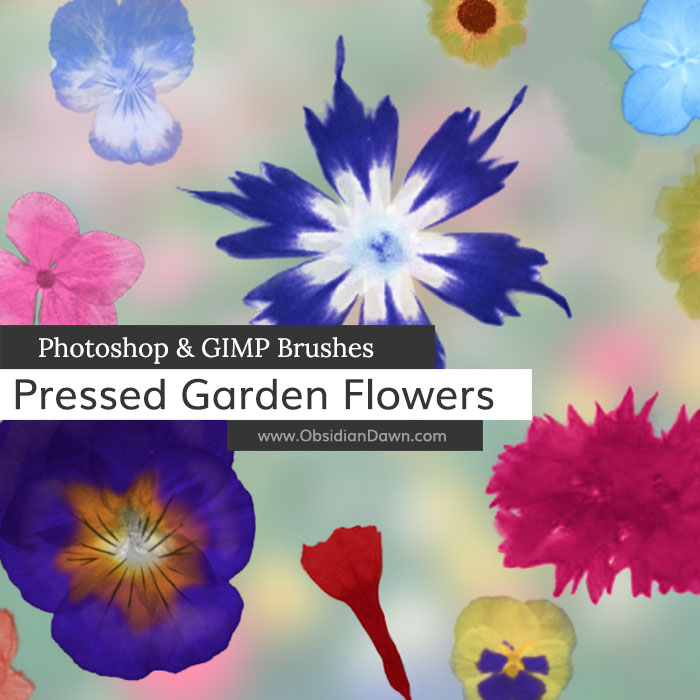 Pressed Garden Flowers Brushes