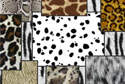 Animal Prints Brushes
