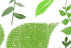 Painted Foliage Brushes